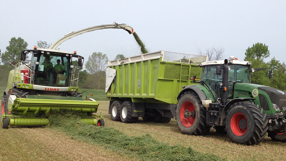Claussen Farms Claas Harvesters